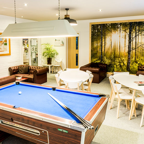 POOL TABLE & LARGE SCREEN TV